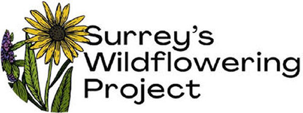 Surrey's Wildflowering Project